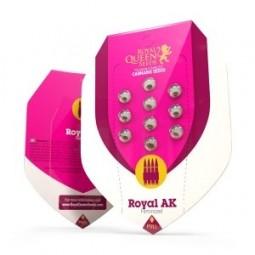 Royal AK - Royal Queen Seeds