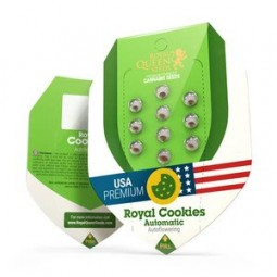 Royal Cookies Automatic - Royal Queen Seeds