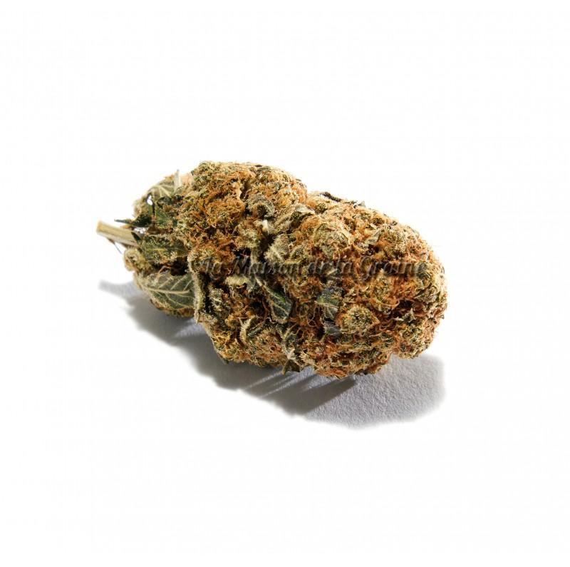 Fleurs de CBD - OG-Kush (16%)