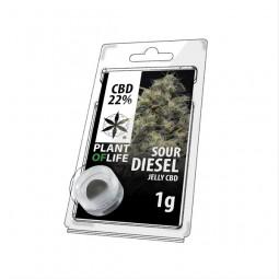 Résine CBD 22% - Sour Diesel