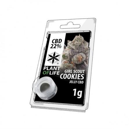 Résine CBD 22% - Girl Scout Cookies