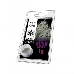 Pollen CBD 10% - Og Kush