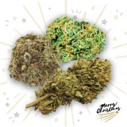 Coffret de Noël - Cannabis Légal