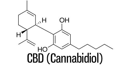 molecule cbd